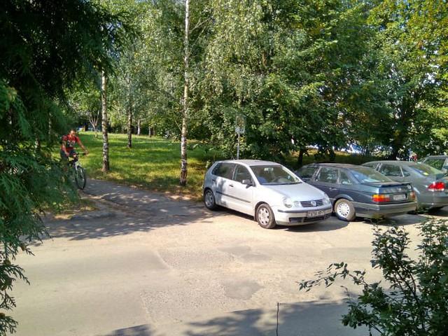 Белорус месяц ночевал вмашине, чтобы выяснить, кто еецарапает