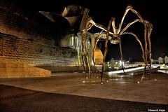 Patas largas. (Howard P. Kepa) Tags: paisvasco euskadi bizkaia bilbao museoguggenheim abandoibarra noche bourgeois mama escultura