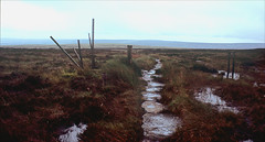 inclement weather (Ron Layters) Tags: badweather rain wet ickornshawmoor path water soggy wood waymarker desolate moor pools footpath slabs submerged pennineway day13 horizon moorland colme keighley yorkshire england unitedkingdom slidefilmthenscanned slide transparency fujichrome velvia canoneos300v canon eos300v rebelti ronlayters 2k 5k highestpositioninexplore254ontuesdaynovember292016 interesting explore