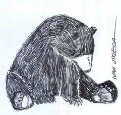 oso a lapicero (ivanutrera) Tags: draw dibujo drawing dibujoalapicero dibujoenboligrafo oso bear animal wild wildlife sketch sketching ilustracion pen boligrafo