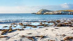 December beach (Arnt Kvinnesland) Tags: beach seascape landscape coast westcoast sand sea seaweed winter december outdoor strand kyst kystlandskap kystnatur sandstrand landskap desember vinter krasanden karmy norway