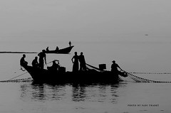 The suffering of the fishermen in Gaza is growing every day due to strict siege on fishing distances (TeamPalestina) Tags: gaza palestinian freepalestine live photo photographer natural تصويري palestine nice am innocent occupation landscape landscapes reflection blockade hope canon nikon fadiathabet