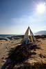 Whale Bones (indomitablemachine) Tags: irisseyl bones peninsula socotra sun whale yemen ye