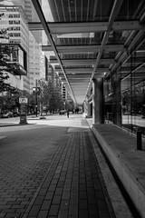 Vancouver, British Columbia, Canada (April 2016) (*Ken Lane*) Tags: can geo:lat=4928846491 geo:lon=12311622083 geotagged vancouverwaterfrontcoalharbourcanadaplace westend bc britishcolumbia britishcolumbiacanada canada canadiancity canadianseaportcity cityofvancouver ciudad coastalseaportcity gastown kanada northamerica pacificnorthwest seaportcity stad stadt vancouver vancouverbc vancouverbritishcolumbia vancouverbritishcolumbiacanada vancouvercanada vancouvercity vancouverite westcoast yvr               bw baw blackwhite blackandwhite blackwhitephoto blacknwhite bnw monochrome monochromeblackandwhite nikkorlens nikon28300 28300 nikond800 nikon28300vr