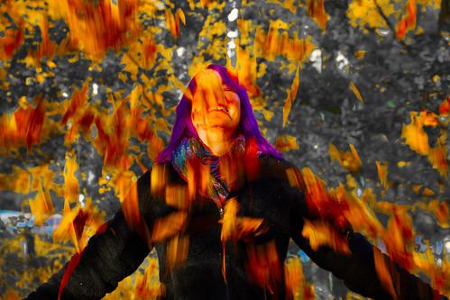 Autumn Drains the World of Colour