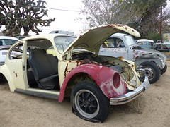 The Old Volks Home (29) - 24 October 2016 (John Oram) Tags: vw volkswagen vwbeetle frenchs yuccavalley theautoclinic 2002p1140326c