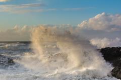 Winter waves at Devils Churn (alex1derr) Tags: capeperpetua devilschurn oregoncoast rocks splash spray wave