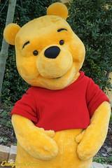 Winnie l'Ourson - Winnie the Pooh (Disneyland Dream) Tags: shanghai disneyland disney resort fantsyland winnie lourson the pooh