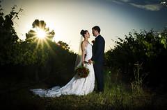 Gorgeous M - The Vineyard (Ranford Stealth) Tags: nikond7000 sigma1770f2845 beauty beautiful woman bride groom wedding perth westernaustralia sunset romantic