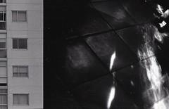 Ilford 721 (eseamau) Tags: analog film blackandwhite contrast high canon canonae1 experimental