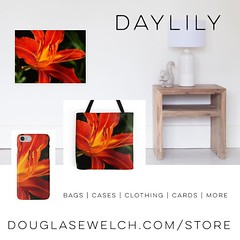 A Bit of Daylily Spring - Cases, Totes, Cards and More! - http://ift.tt/1hfrEWq #flowers #nature #garden #daylily #outdoors #products #forsale #cards #cases #clothing #home #house wares (dewelch) Tags: ifttt instagram a bit daylily spring cases totes cards more douglasewelchcomstore flowers nature garden outdoors products forsale clothing home house wares