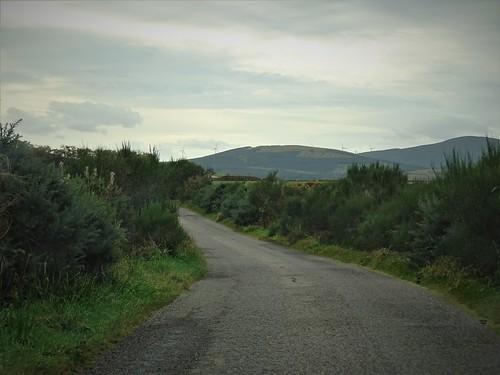 263. Scotland 2016