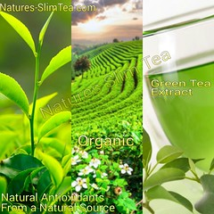 Matcha or Green tea Extract helps with weight loss (Natures SlimTea) Tags: matcha loseweight oolongtea puerhtea antioxidants healthyliving slimmingtea beautifulskin loseweightfast dietplans healthyskin greenteaextract naturalweightloss greenteadiet weightlosstea greenteabenefits slimtea detoxtea howtoloseweightfast geeentea naturesslimtea dietslim