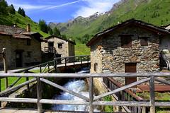 Alpine huts in Viso (annalisabianchetti) Tags: mountains alps montagne huts viso stelvio vallecamonica