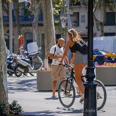 DSC_1699-2 (andrey.salikov) Tags: barcelona city light colour beautiful wonderful photo nice nikon europe foto gorgeous free sensual stunning lovely niceface magnifique ottimo niceday buenisima niceplace niceimage fantasticcolors nikond60 peacefulmind moodshot dreamscene goodatmosphere fantasticplaces  colourfulplaces relaxart harmonyvision harmonyday2015