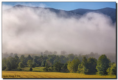 Morning Fog (Fraggle Red) Tags: morning trees summer mountains fog nationalpark cove tennessee hills smokies hdr smokymountains greatsmokymountains cadescove greatsmokymountainsnationalpark canonef24105mmf4lisusm 7exp dphdr canoneos5dmarkiii 5d3 5diii adobephotoshopcs6 adobelightroom5