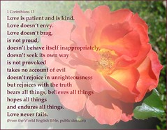 1 Corinthians 13, with rose background (Martin LaBar (going on hiatus)) Tags: love rose poster agape 1corinthians13 unselfish