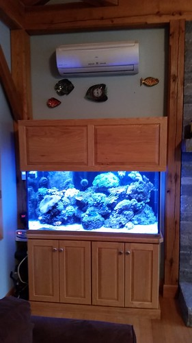 120 Gal Custom Living Reef - Private Residence - CT
