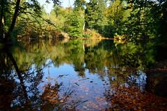Twickel (l-vandervegt) Tags: holland nature water netherlands landscape nikon nederland natuur twente overijssel landschap niederlande twickel delden 2015 d3200