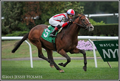 Takeover Target wins the Hill Prince (Spruceton Spook) Tags: horses horseracing belmontpark takeovertarget hillprince