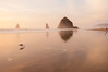 Seagull at Haystack Rock 197 (martinjones1946) Tags: martinjones nikond5000 landscape seascape haystackrock seagulls cannonbeach beach coast shore sunset reflection oregon oregoncoast platinumheartaward greatshotss rock seabird ruby10 ruby15