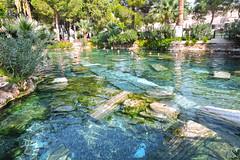 Cleopatra pool (klopatra havuzu) (talipcetin) Tags: water pool turkey landscape bath antique trkiye cleopatra pamukkale denizli hierapolis havuz cottoncastle klopatra