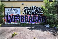 GL Lyfer Babar Aot 2015 DSR1339 (photofil) Tags: urban streetart graffiti montral montreal urbanart babar gl lyfer photofil