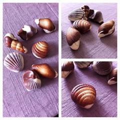 choco_shells (frio_lenta) Tags: shells chocolate delicious crafty diseo detalles delicia amam cutelilthings diseosmarinos