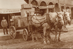 Horse Wagon Hauling Goods