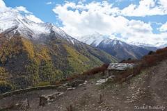 Haizi Valey (Vinchel) Tags: china sichuan siguniang trek outdoor mountain hiking fuji xt2 1655mm f28 landscape mountainside valley hill travel