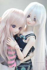 Who will be your dollie date? (krissy_sakura ) Tags: koneko saika ddh09 ddh07 dollfiedream dd dollfiedreamsister dds dolls vinyl pastle girls date krissysakura