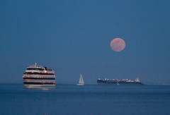 Super moon, plate 1 (Michael Dunn~!) Tags: boats embarcadero goldenhour moon photowalking photowalking20120505 photowalkingsolo sailboat sanfrancisco sky supermoon water