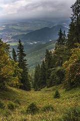 Valley (Miroslava Balazova LAZAROVA) Tags: forest nature landscape beauty slovakia janska dolina valley trees mountain hiking