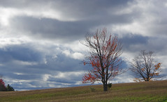 Almost Gone (jameskirchner15) Tags: trees clouds fall autumn sky scenery landscape alone michigan mood brooding pentax