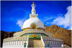 IMG_6319 (satshaug26) Tags: leh ladakh pangong lake india