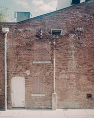 untitled-52-Edit (dvlmnkillatron) Tags: pentax6x7 selfdeveloped analog film champaign arttheatre alley bricks pipes cables backdoor mediumformat 120