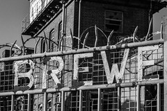 Brew and spikes mono (PDKImages) Tags: pussy clown street sheffield art broken windows cat sloth horror goth abandoned stairs girl beauty love industrial contrasts coffin
