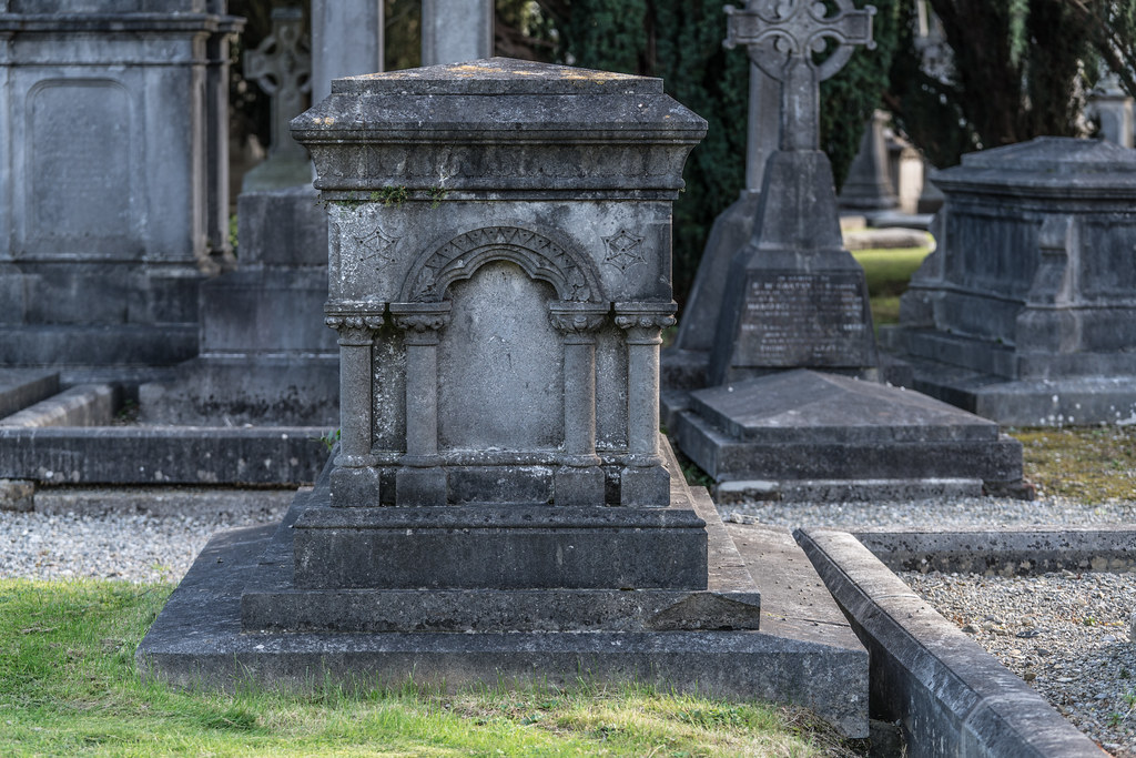 A QUICK VISIT TO GLASNEVIN CEMETERY[SONY F2.8 70-200 GM LENS]-122095