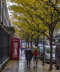 Rainy Streets of London (Danno KaBlammo) Tags: europe danny bourque 2016 uk british england london britain gb great united kingdom brits english