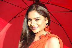 South Actress Deepika Das Hot in Red Sari Photos Set-5 (1)