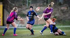 _SJL5114.jpg (Welsh_Si) Tags: dragons december ladies rugbyunion regional sport gwent swansea newport ospreys 04 2016 rugby womensregionalrugby sthelens wales gbr
