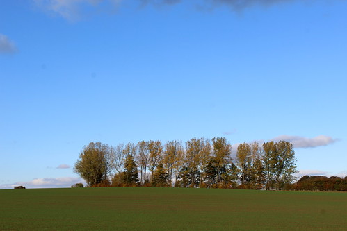 Across this Field is Winnow Lane