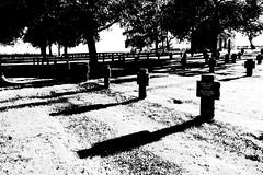German Cemetery, the Somme (Jordan Barab) Tags: somme france street streetphotography blackandwhite bw sonydscrx100markiii rancourt cemetery wwi worldwari german