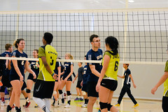 2016 Extramural Volleyball vs. Humber North-27 (centennial_colts) Tags: green scream 2016 2016ocaa extramural centennial colts centennialcolts college humber volleyball mens womens coed