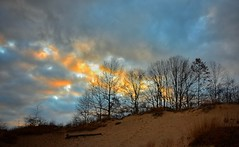Sunset through the Trees (mswan777) Tags: tree dune sand cloud sunset evening autumn fall silhouette nature scenic nikon d5100 sigma 1020mm quiet color weather pattern