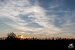 Tramonto autunnale (andrea.prave) Tags: nature natura mantegazza rogorotto parcoagricolo bosco lombardia lombardy autunno fall autumn  automne otoo herbst  tramonto sunset atardecer solnedgng solnedgang      coucherdusoleil  zonsondergang prdosol  puestadelsol sonnenuntergang campagna county vanzago countryside campaa campagne kampagne