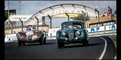 Jaguar XK 140 FHC (1955) & C-Type (1952) (Laurent DUCHENE) Tags: jaguar xk 140 fhc xk140 ctype typec peterauto lemansclassic 2016 bugatti