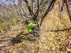Tree climbing with Kevork (RickyOcean) Tags: armenia noragavit kevork treeclimbing