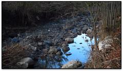 Riera de l'Avenc, Aiguafreda (Jessur gustson) Tags: elsenyordelsbertins canon ixus310hs catalunya catalua catalonia espanya espaa spain barcelonaprovincia valles vallesoriental aiguafreda parc parque park natural montseny riera avenco
