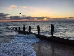 Seagulls At Sunset (Marc Sayce) Tags: seagulls hayling island hampshire sunset clouds beach sundown isle wight groynes